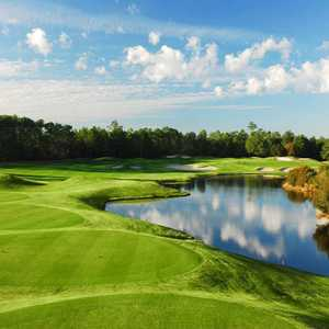 Wild Wing Plantation - Avocet: #14