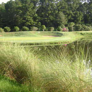 Palmetto Greens GCC