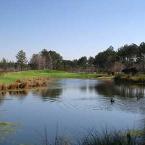 Palmetto Greens GCC: #17