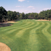 A view of fairway at Possum Trot Golf Club
