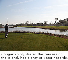 Cougar Point