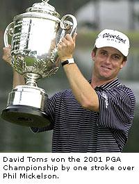 David Toms